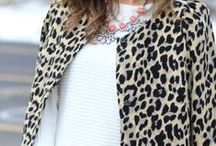 Leopard & cheetah