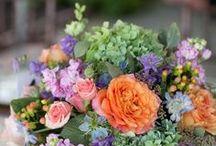 Flowers flowers everywhere  / All types of beautiful flowers / by Linda Katz