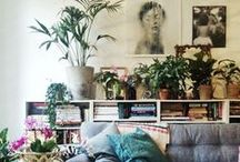 Beautiful Spaces and Places / Beautiful places+overgrown indoor plant craziness+wood+upcycled boho chic