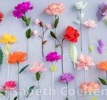 My paper flowers
