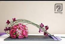 Composizioni floreali /Ikebana