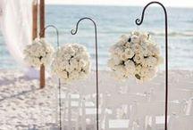WEDDING ✖ ceremony