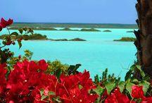 take me there / by Mali Creek