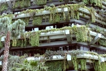 Other Vertical Gardens / See 'Hanging Gardens NZ' facebook page for further inspiration