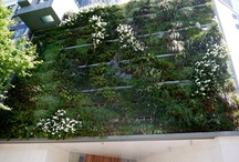 Competitive Products / See 'Hanging Gardens NZ' facebook page for further inspiration