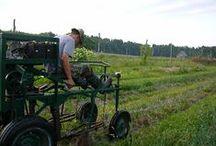 FLX Farms / Our farm heros! Finger Lakes, NY