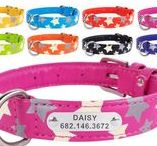Reflective Dog Collars / Collars  in various colors and styles for those who love evening walks. Now your dog is safe and sound!!!