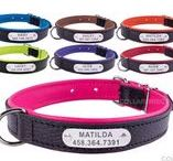 Laser Engraved Pet Leather Collar / Available in 4 sizes and 7 colours. Fit great for all dog breeds from Small to Extra large.