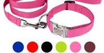 Free Custom Engraved Nylon Dog Collar and Leash Set / These handmade  dog collars and leashes are made of strong and flexible nylon. Supplied with a strong metal buckle. Vivid colors and stylish look.