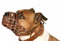 Secure Leather Basket Staffordshire Pit Bull /  A secure training muzzle contains 2 adjustable straps. Made of natural leather. It's well ventilated.Comes in two colours: brown and black.