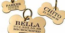 Brass Pet ID Tags / Enjoy Custom Engraved ID Tags
