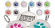 Enameled Custom Emgraved Dog ID Tags / Stainless Steel ID Tags