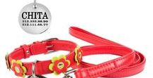 Collar Leash Matching Set Flower Decorated Personalised / Wonderful matching collar and leash set