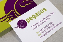 Our Work - Pegasus - Brand refresh / Acumen design refresh an established brand to allow it to compete for larger contracts.