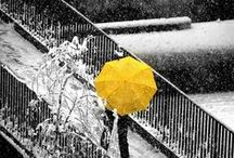 COLOR | Yellow Sun, Grey Skies