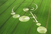 I Love Crop Circles / Picture of crop circles to for meditation and elevation of consciousness.