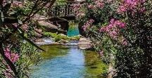 I love Water / Water, mesmerizing water, soothing water, inspiring water, pools and ocean, hot and cold, fountains and rivers, unending flow of emotion. Our mother, our nourishment, the  life sustaining reflection of our very being.
