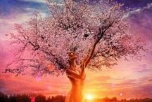 I love Trees / Trees are amazing beings and deserve our recognition for their beauty and wisdom. They always give more to the world than they take at every stage of their lives.  / by Sandy Penny . Sweet Mystery Books