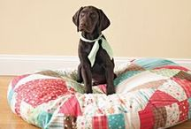 Sewing for Pets / Sewing Tutorials for Pets - coats, beds, blankets and other great ideas