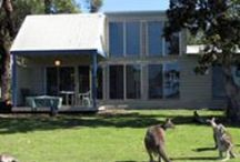 The Lodges and Conference Centre / Waterfront Retreat at Wattlepoint