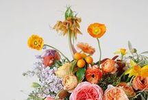 floral / flowers, floral design