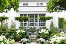 Gardening/Outdoors / Beautiful gardens, exquisite landscaping, dining alfresco, and exterior painting ideas / by Elisa Smith
