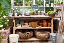 Gardening* idea / ~*In the Garden / by Katsue Watanabe