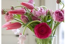 Floral* Decor / by Katsue Watanabe