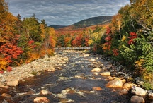 Fall in New England / Myuntangledlife.com falls in love with New England each and every autumn. Colorful leaves, pumpkin patches and, of course, apple pie, fill the crisp air with the scents and sights of a New England fall.  / by MyUntangled® Life