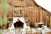 Wedding Ideas / by Cindy Barnes Spradlin