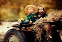 For The Little Farm / by Cindy Barnes Spradlin