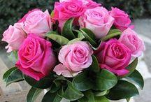 Flowers I love / flowers