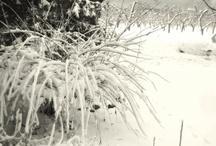 Winter Wonderland / Winter Time around the World