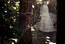 ▫️ Wedding Theme Ideas ▫️