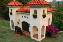 Dogs Need Houses Too!