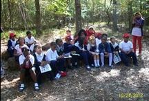 Educational Activities  / Educational Actvities at the Columbus Botanical Garden