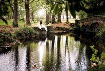 Woodland weddings / Inspiration for beautiful woodland weddings.