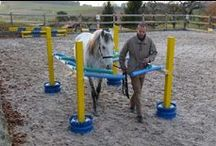 Equine Training / Obstacles / Pins about different obstacles & training tips  / by Heidi Offrey