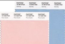 Trendfarben 2016: Rose quartz & Serenity / Jedes Jahr wählt das Pantone Color Institut eine Farbe des Jahres. 2016 entschied man sich gleich für zwei: Rose quartz und Serenity.