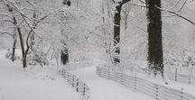 winterlcious
