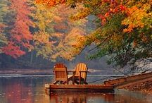 When Autumn leaves start to fall... / by Ruth McGarvey