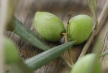 ◕Mediterranean Olives