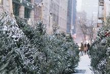 Winter & Christmas❄