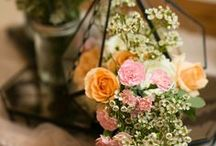 Peach, Blush Pink, Champagne and Ivory