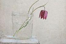 STYLING: flower & vase