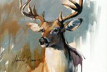 Deer portraits