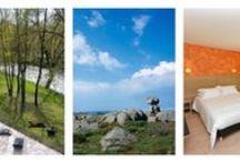 Le Mont Lozère; tourisme en Languedoc Roussillon à l'Hôtel Les 2 Rives / Contemplez Le mont Lozère et ses rochers lisse; profitez de vos vacances pour visitez la Lozère et ce coin de paradis. Un séjour à deux ou en famille L'Hôtel Les 2 Rives vous proposera la formule qui vous convient. #séjour à 2 ou en famille en Lozère. #tourisme Mont Lozère #hôtel Les 2 Rives