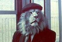 Lion Love / Narasimha