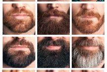bearded 2
