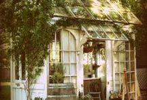 Pottingsheds and greenhouses